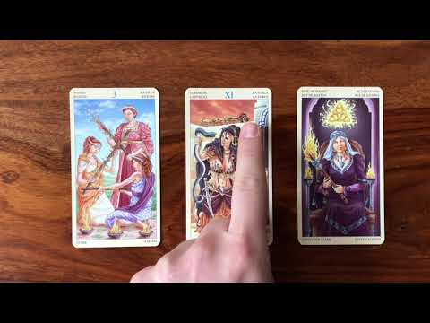 Daily Tarot Reading for 24 October 2017 | Gregory Scott Tarot