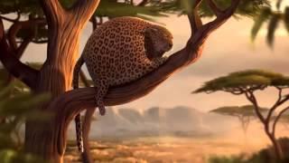 Животные после макдональдса