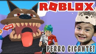 Pets in Roblox ESCAPE FROM THE TENDER PET STORE ? Obby Roblox for kids