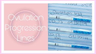 OVULATION TEST PROGRESSION LINES + BASIC INFO| CYCLE #3 UPDATE|