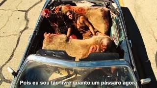 Lynyrd Skynyrd - Free bird - Legendado