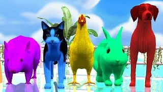 Learn Colours With farm Animals Colours  || Children Rhymes Collection || 3d Animated Rhymes