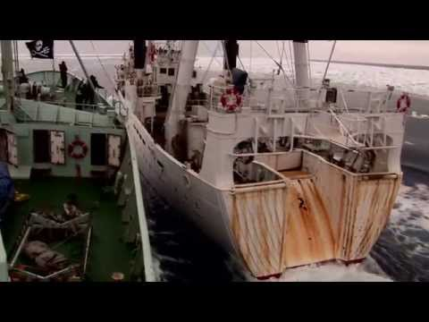 Sea Shepherd -  Operation Leviathan 2006-2007