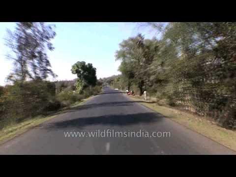 Way back from Jabalpur to Kanha