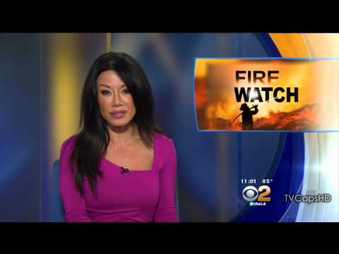 Sharon Tay 2015/08/17 CBS2 Los Angeles HD