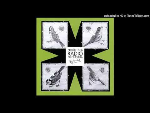North Sea Radio Orchestra - Birds (2008 ENG) - Personent Hodie