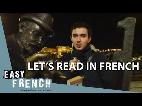 Super Easy French 14 - Let's read French books