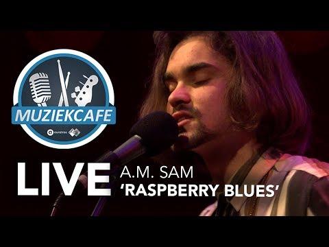 A.M. Sam - 'Raspberry Blues' live bij Muziekcafé