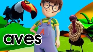 Aprender las aves educativos animales - Alex dibujos animados