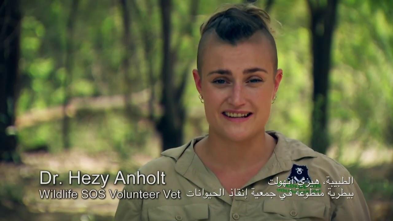 جمعية إنقاذ الحيوانات (أبطال الغابة) : العودة إلى الديار | ناشونال جيوغرافيك أبوظبي