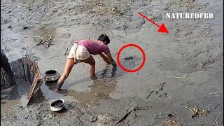 Amazing fish Catching lot of catfish from mud water using diesel engine | fish hunting | NatureOfBD