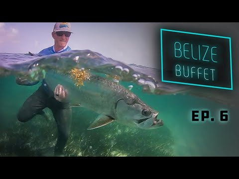 Belize Buffet - Tarpon and Permit Fly Fishing!
