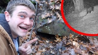 DEADLY CAVE DWELLER! *Exposed*