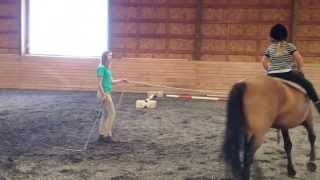 Kids Ages 5-16 Riding Skye, 14h Dun Sport Pony Trained with Natural Horsemanship