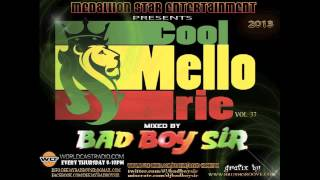 Medallionstar Entertainment Presents Cool Mellow Irie Vol.37