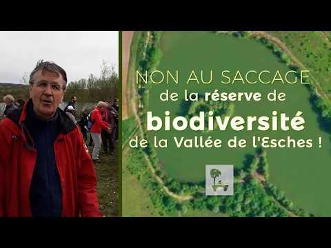 Saccage du dernier espace sauvage de la Vallée de l'Esches (Oise)