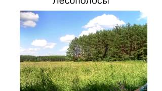 "Выпуск №4. ""Аркадий Айдак, русский Зепп Хольцер """