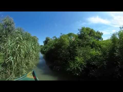 Romanian Nature - Danube Delta - 1