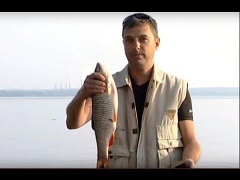 евгений патраков ловля голавля о рыбалке всерьез