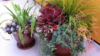 Gambar cover How to Use Pots in Landscape Design