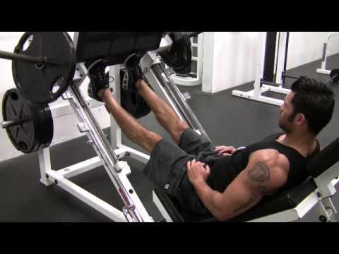 Leg Press Calf Raises - Male - YouTube