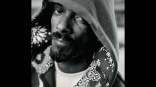 Snoop Dogg - Life Of Da Party ( GREAT QUALITY)