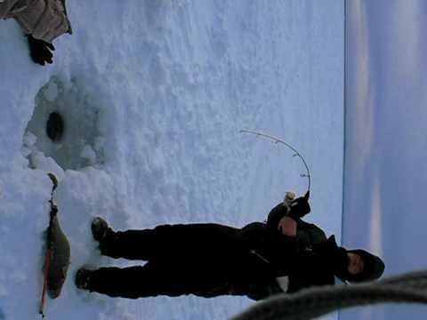 how to catch lake trout ice fishing