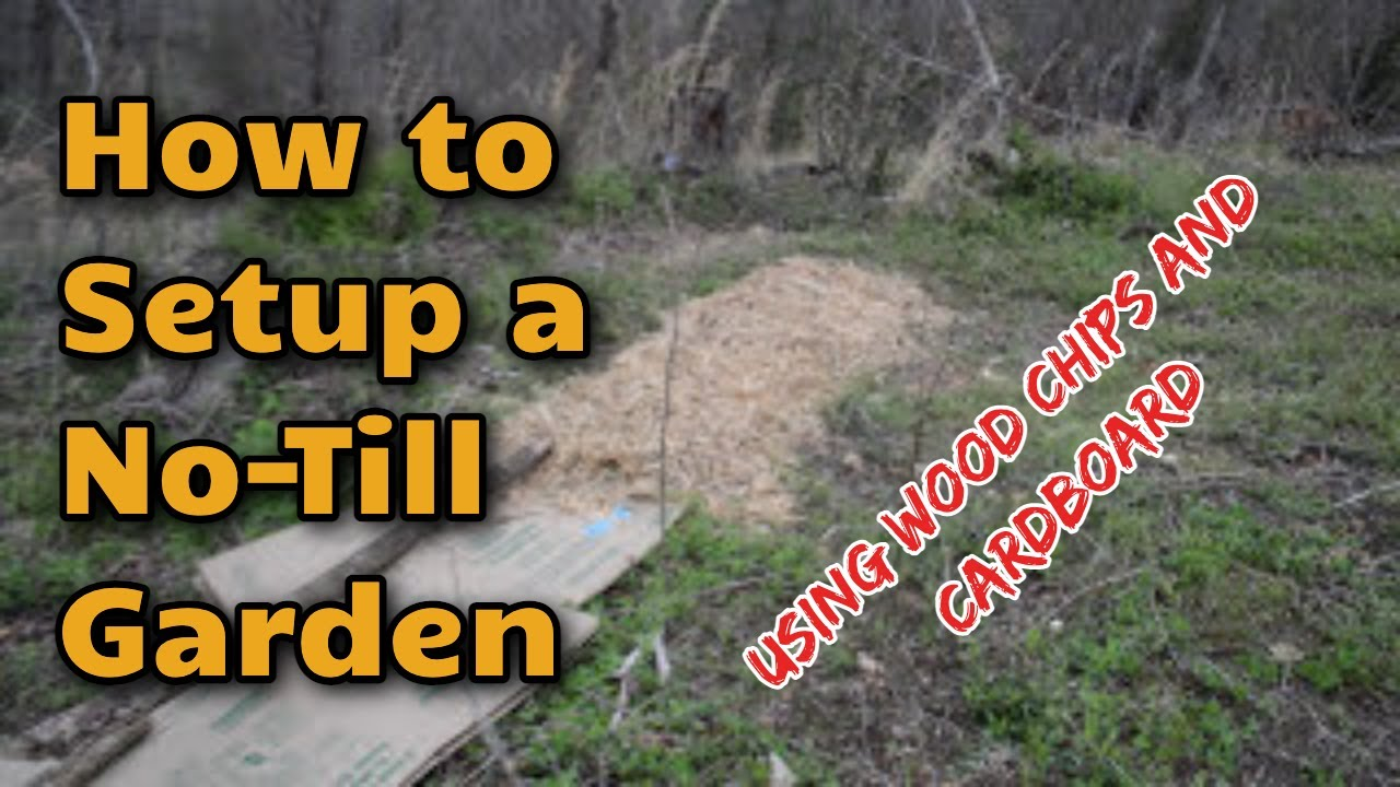 How to Setup a No Till Garden Using Mulch and Cardboard