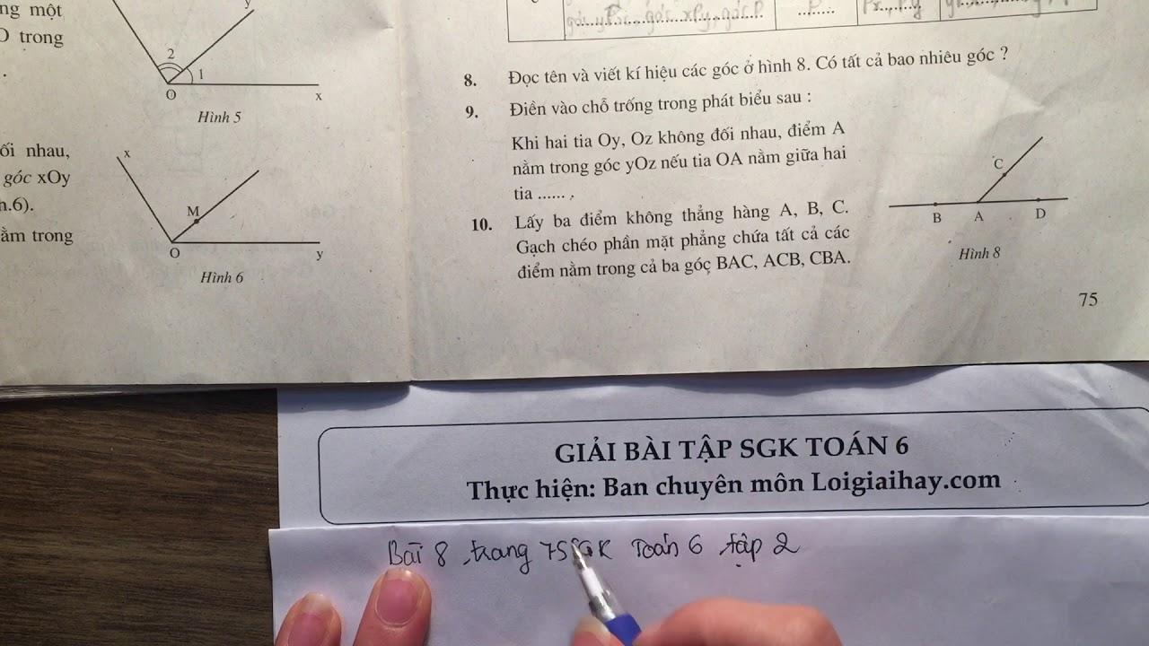 Giải bài 8 trang 75 SGK toán 6 tập 2
