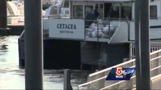 Ferry Runs Aground Second Time Two Weeks