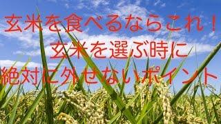 玄米を食べるなら絶対これ!玄米を選ぶ時に絶対に外せないポイント。