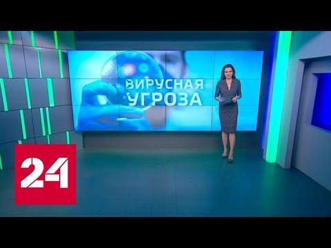 Вирусная угроза и экономика: кто в плюсе, а кто в минусе - Россия 24