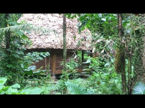 Walk Full Video Best Beach to Barefoot Hotel Room