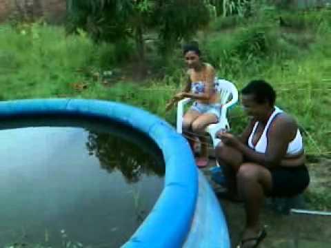 Cria ao de tilapias em casa doovi for Criar mojarras en casa