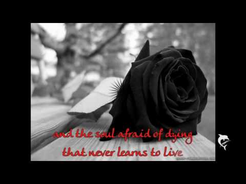 Don Williams - The Rose [Lyrics]