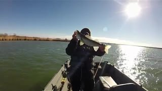 Winter Powerplant Walleye Wolf Creek Nuke KS USA