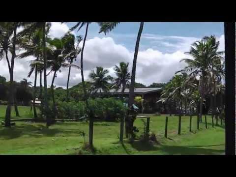 Even more travelling around Suva, Fiji, on a tourist bus