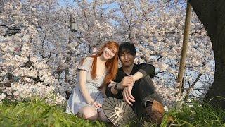 cherry blossoms at kiyosu castle ✿ 花見・清州城
