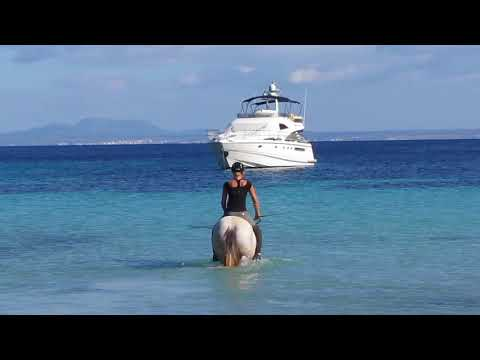 Horse riding in the Mediterranean sea