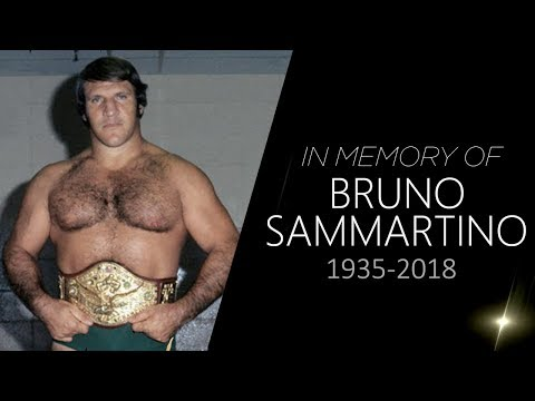 WWE Bruno Sammartino Tribute (1935-2018)