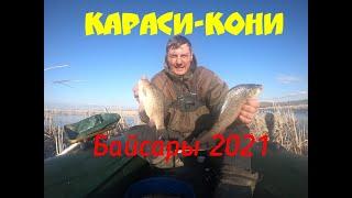 Ишим рыбалка в запрете Караси кабаны Попал на раздачу клевало как с пулемёта