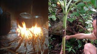 Bí ẩn về sự trả thù khủng khiếp của rắn độc khổng lồ ở An Giang