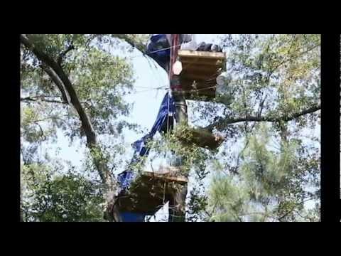 The Texas Tree Village: Tar Sands Blockade