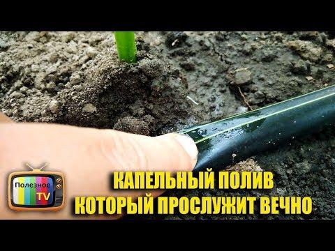 Как сделать капельный полив в теплице своими руками видео