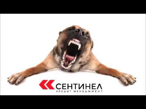 Сентинел против. 22 Анкл Вова & Сон (ТЁТЯ, ПОШЛА В ЖОПУ !!!)