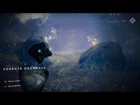 Destiny 2 - Cabbage Error