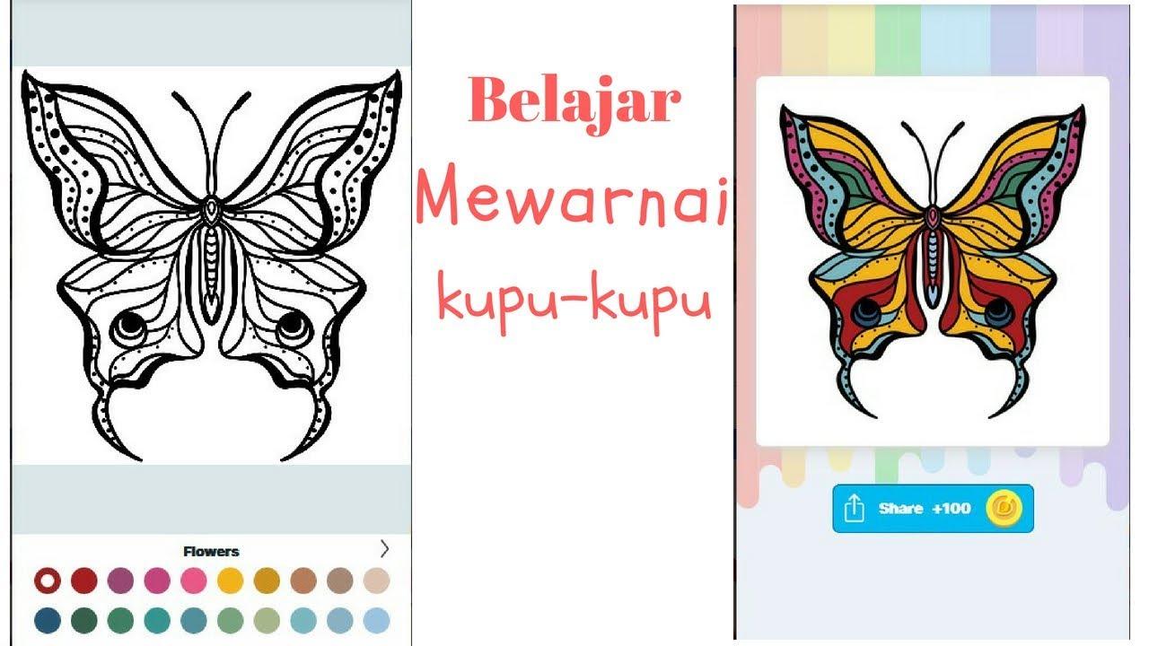 Belajar Mewarnai Kupu Kupu Learn Coloring Butterflies Game