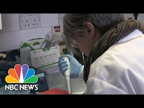 Oxford University Scientists Say Coronavirus Vaccine Could Be Ready By Year's End | NBC Nightly News