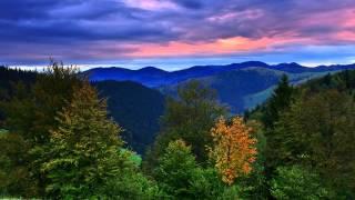 Красивая музыка звуки природы