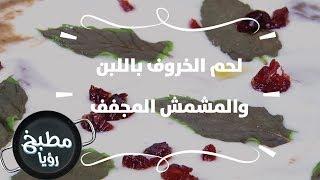لحم الخروف باللبن والمشمش المجفف - ايمان عماري